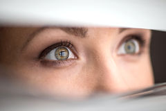 Beautiful woman peeking through jalousie. Royalty Free Stock Photo