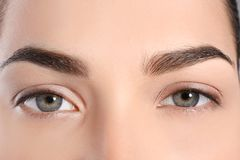 Beautiful woman with perfect eyebrows Royalty Free Stock Photography