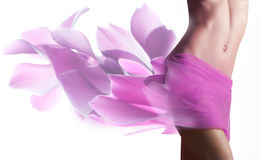 Beautiful woman with petals  on her hips Stock Images