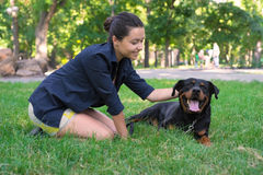 Beautiful woman petting a dog. View from above Royalty Free Stock Photography