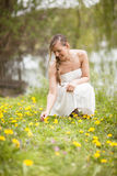Woman picking spring wildflowers Royalty Free Stock Image