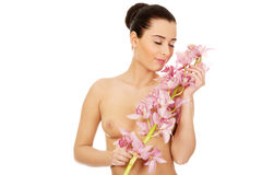 Beautiful woman with pink flower. Stock Image