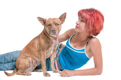 Beautiful Woman and Pit Bull mix dog Royalty Free Stock Photography