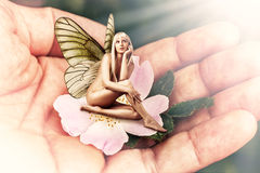 Beautiful woman pixie with butterfly wings. Sitting on a tender pink flower in male hand stock images