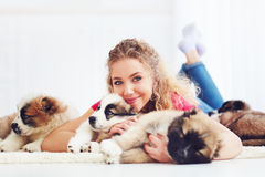 Beautiful woman playing with cute caucasian shepherd puppies. Beautiful young woman playing with cute caucasian shepherd puppies royalty free stock photography
