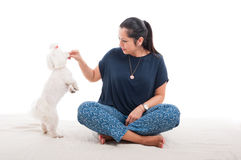 Beautiful woman playing with her cute puppy Stock Image