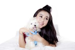 Beautiful woman playing with her dog. Portrait of a beautiful woman playing with her Maltese dog on the bed, isolated on white background Stock Images