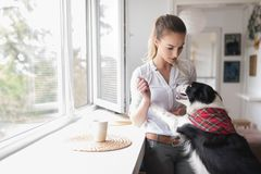 Beautiful woman playing at home with her happy dog Royalty Free Stock Photo