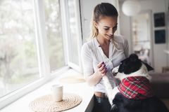 Beautiful woman playing at home with her happy dog. Beautiful woman playing at home with happy dog Royalty Free Stock Image