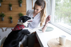 Beautiful woman playing at home with her happy dog Stock Images