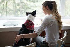 Beautiful woman playing at home with her happy dog Royalty Free Stock Images