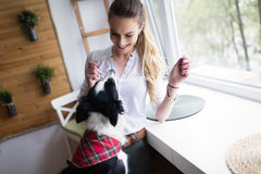 Beautiful woman playing at home with her happy dog Stock Image