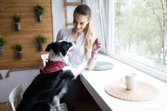 Beautiful woman playing at home with her happy dog Stock Photo