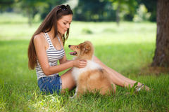 Beautiful woman playing in the park with a puppy collie. Woman beautiful young happy with long dark hair in striped sweater holding collie dog. Young woman Stock Photos