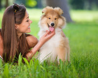 Beautiful woman playing in the park with a puppy collie. Woman beautiful young happy with long dark hair in striped sweater holding collie dog. Young woman Royalty Free Stock Images