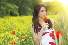 Beautiful woman in poppies field Stock Image