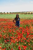 Beautiful woman with poppies royalty free stock image