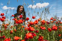 Beautiful woman with poppies stock image