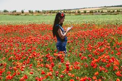 Beautiful woman with poppies royalty free stock images