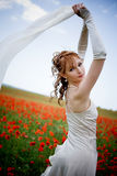 Beautiful woman in poppy field Royalty Free Stock Photos