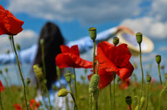 Beautiful woman in the poppy field of flowers royalty free stock images