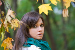 Beautiful woman portrait in autumn forest Stock Image