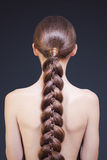 Beautiful Woman Portrait. Long Brown braid Stock Images