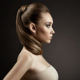 Beautiful Woman Portrait. Long Brown Hair Royalty Free Stock Photo