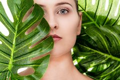Beautiful woman portrait with tropical plant. Beautiful woman portrait with natural makeup and a tropical plant in front of her face royalty free stock images
