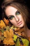 Beautiful woman portrait. Young model posing on black background with. Autumn leaves. Gorgeous make up Stock Images