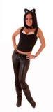 Beautiful woman posing in cat costume Royalty Free Stock Images