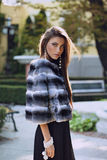 Beautiful woman posing in a chinchilla fur coat Stock Images