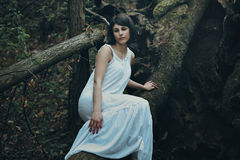 Beautiful woman posing on a dead tree Royalty Free Stock Images