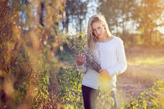 Beautiful woman posing in a field Stock Photography