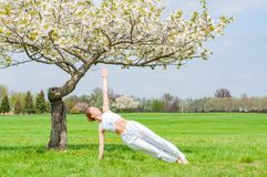 Beautiful woman is practicing yoga, doing Camatkarasana pose near blossom tree stock image