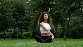 Beautiful woman practicing yoga in the park stock video footage