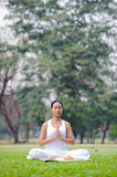 Beautiful woman practicing yoga in the park Royalty Free Stock Photo