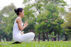 Beautiful woman practicing yoga in the park Royalty Free Stock Images