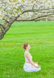Beautiful woman is practicing yoga sitting in Lotus pose near blossom tree royalty free stock images