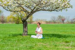 Beautiful woman is practicing yoga sitting in Lotus pose near blossom tree royalty free stock photos
