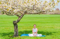Beautiful woman is practicing yoga sitting in Lotus pose near blossom tree stock images