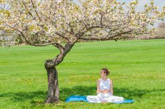 Beautiful woman is practicing yoga sitting in Lotus pose near blossom tree stock photo