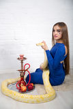Beautiful woman with python. Bright photo, studio shoot, beautiful woman with long light hair, holding wild albino python, smoke hookah. Erotic emotional Stock Photography