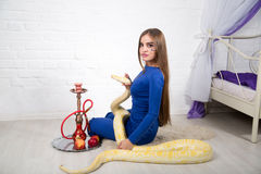 Beautiful woman with python. Bright photo, studio shoot, beautiful woman with long light hair, holding wild albino python, smoke hookah. Erotic emotional Royalty Free Stock Photography