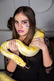 Beautiful woman with python. Beautiful girl in lace black dress is in the studio room. It is on a large table desk holding a huge white albino python, which Royalty Free Stock Image