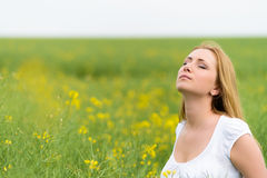 Beautiful woman in rape field Stock Image