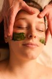 Beautiful woman receiving a facial massage in a spa. Stock Image