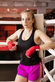 Beautiful Woman with the Red Boxing Gloves. Attractive Female Boxer Training. royalty free stock photos
