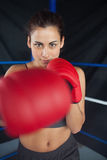 Beautiful woman in red boxing gloves in the ring Royalty Free Stock Photo