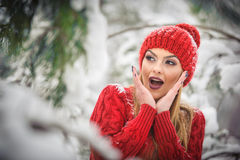 Beautiful woman in red with brown fur cape enjoying the winter scenery in forest. Blonde girl posing under snow-covered branches Stock Photography